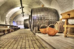 vin kælder